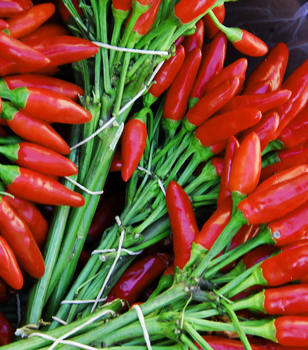 Chillis flickr©oceanaris
