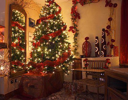 weihnachtsbaum welcher h lt am l ngsten die gartenoase. Black Bedroom Furniture Sets. Home Design Ideas