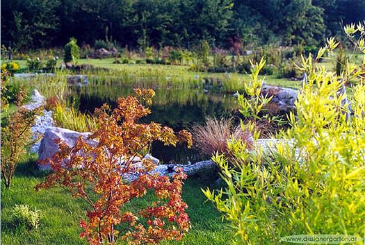 Gartenteich einheimische fische im naturnahen lebensraum for Einheimische fische gartenteich