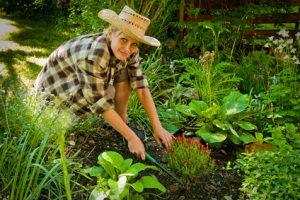 Eine Frau bepflanzt ihren Garten