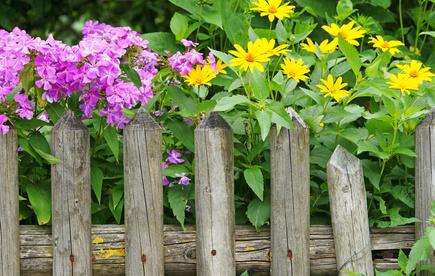 Ein Holzzaun als Alternative zur gabione