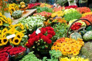 Blumenknigge: Für jeden Anlass die passenden Blumen