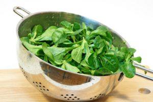 Inhalt des Artikels ist die Ernte von Feldsalat im Herbst.