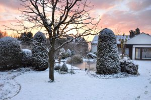 Der Artikel gibt Tipps um den Rasen winterfest zu machen.