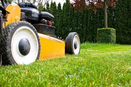 Artikelgebend sind Tipps zur Rasenpflege im Frühling.